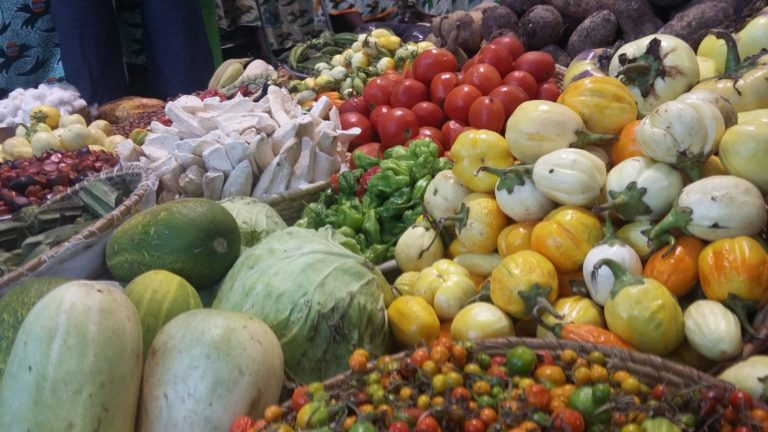 Agriculture: l'extraordinaire potentiel africain